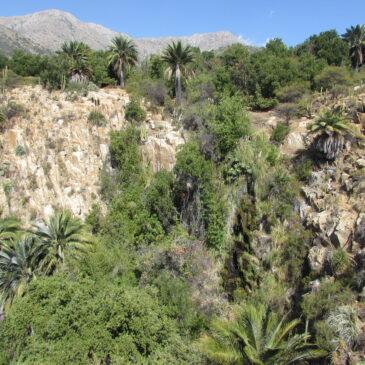 Trekking Abierto Parque Nacional La Campana