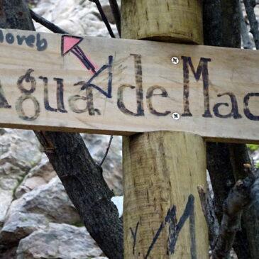 Trekking Aguas del Maqui