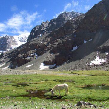Trekking con Campamento Piedra Carvajal – Yerba Loca