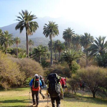 Travesía Parque Nacional La Campana: Olmue-Ocoa