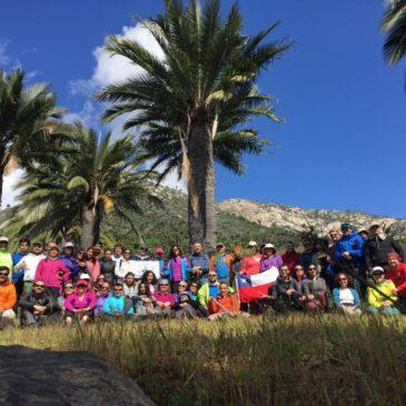 Trekking Abierto Palmas de Ocoa