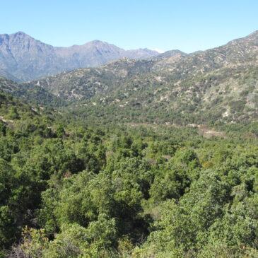 Trekking Abierto Parque Nacional Rio Clarillo