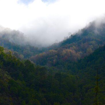 Trekking Cerro El Poqui