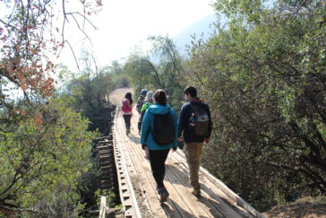Trekking Abierto Bosque Panu